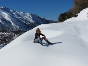 Sitting on top of the snowy mountain