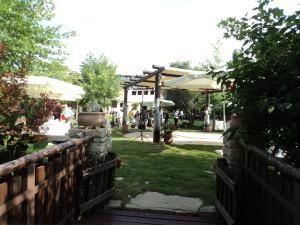The Riverside Taverna in Armenoi