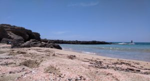 Falasarna beaches had lots of seashells and pink sand. Just gorgeous!